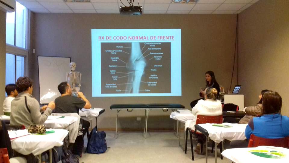 3er Año, 1er Seminario - Formación en Osteopatía 2017